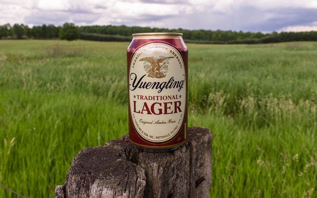 Yuengling Lager beer can