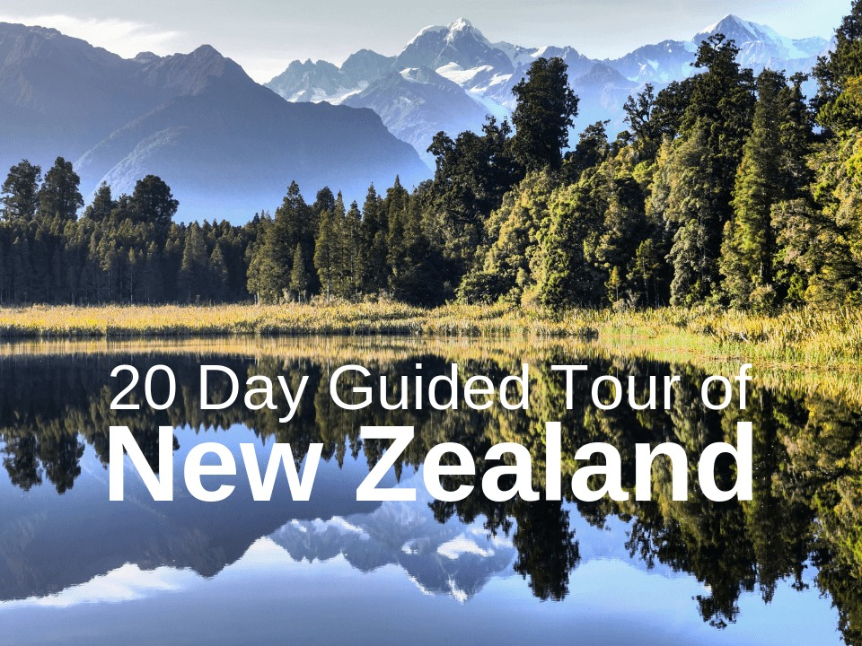 20 day guided tour of New Zealand with Stray Travel