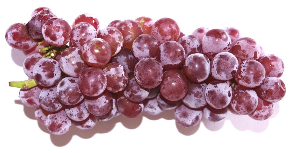 Delaware grapes