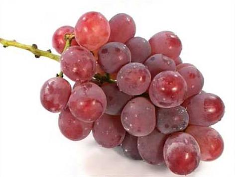 Kaiji grapes from Japan